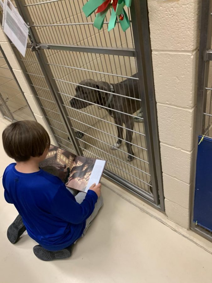 Troy Reynolds reads to a dog at the Humane Society on Dec. 18.