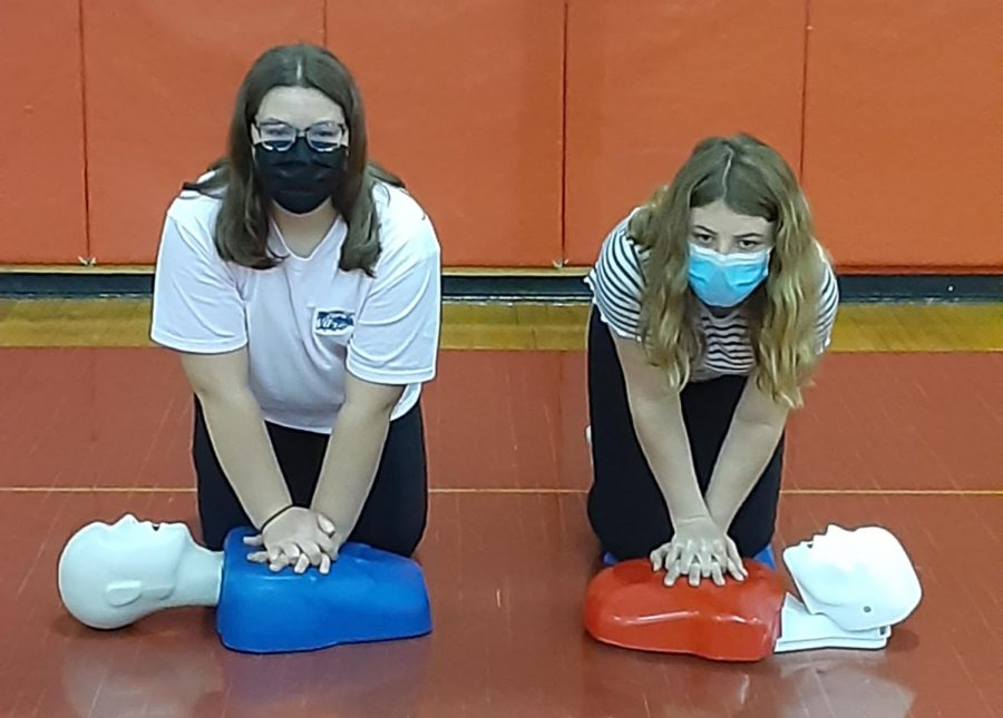 Sixth graders perform CPR on CPR dummies